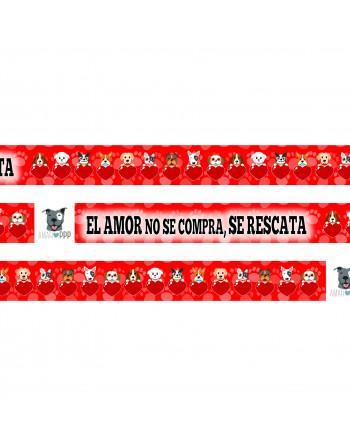 Camiseta infantil algodón